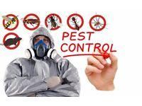 Pest control 24/7 Emergency Services Ilford, Barking, East ham, Dagenham, Newham, Redbridge, London