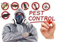 100% Pest Control In London from only £40!!!