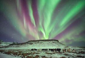 SPÉCIAL DE DERNIERE MINUTE Islande/Iceland 2 semaine! VITE VITE! West Island Greater Montréal image 1