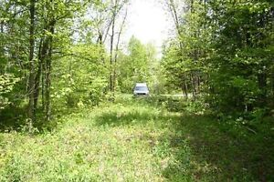 HUGE LAND WITH TRAILER AND 100% FINANCING ONLY $ 2,000 DEPOSIT West Island Greater Montréal image 5