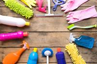 Cleaner/housekeeper