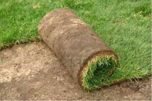 SPRING SOD SPECIAL $1.00 SQ/FT FREE ESTIMATES NEW LAWN, NEW GRASS BOOK NOW!!