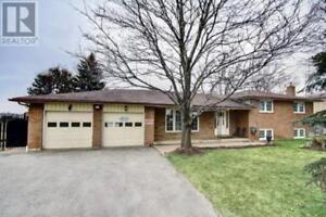 7146 HIGHWAY 9 New Tecumseth, Ontario