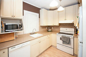 Renovated, Clean Home with Private Financing Available!