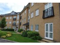 1 bedroom flat looking to swap for a 2 or 1 big bedroom ground floor home,Colchester