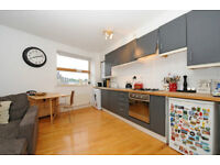 Superb TWO DOUBLE bedroom apartment overlooking NEWINGTON GREEN