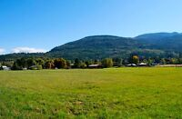 Beautiful  flat acreage  with a view.