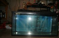 Aquarium with light cover and background