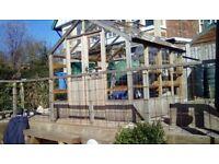 swallow swift raven wooden greenhouse
