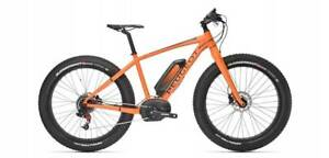EBIKE I WANT TO BUY YOUR Electric Bicycle