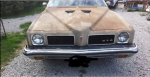 Wanted 1973 Pontiac lemans/GTO hood.