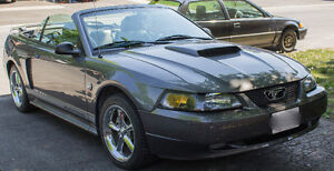 2004 Ford Mustang GT 40 Year Premium Package Convertible
