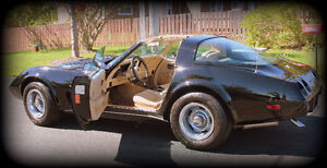 1979 Corvette in fantastic shape