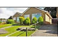 2 bed detached bungalow - Torbay, Devon - Holiday Home / Investment opportunity - Priced to sell now