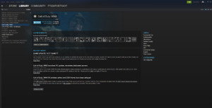 FOR PC STEAM ACCOUNT with CALL OF DUTY WW2+12 games!