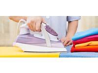 Ironing Lady / Garment Presser