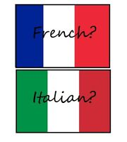 French or Italian speaking Volunteer?!