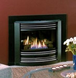 FIREPLACE INSERT - SHOWROOM MODEL