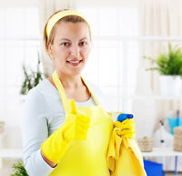 Established Cleaning Company