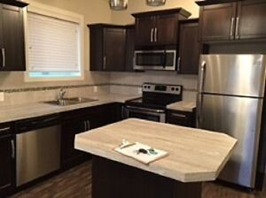Available April 1, 2017 Newer Basement Suite in Penhold