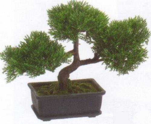 artificial bonsai floral decor ebay. Black Bedroom Furniture Sets. Home Design Ideas