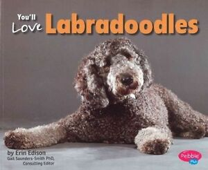 You-039-ll-Love-Labradoodles-by-Erin-Edson-Paperback-2014