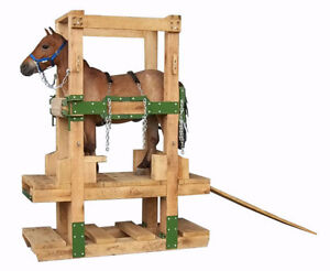 Miniture Horse Shoeing and Handling stocks