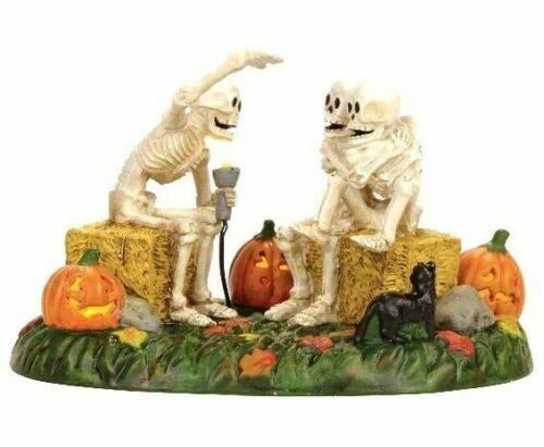 Dept 56 SCARY SKELETON STORIES Halloween Village Accessory 4056710 DEALER STOCK