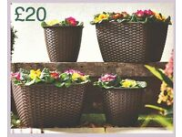 Set Of 4 Rattan Planters - Brand new in packaging
