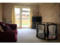 3 Bed houseswap - Luton to London - looking for 3-4 bedroom in haringey & other areas close by.