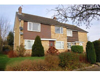 2 bedroom spacious flat, with own entrance, to rent