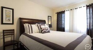 Luxurious Queen Room