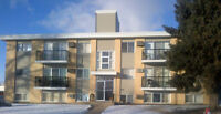 FULLY FURNISHED EXECUTIVE 2 Bedroom Condo