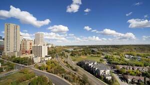 Amazing Skyline Views of Downtown Edmonton Edmonton Area image 17