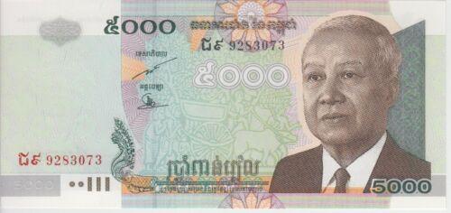 Cambodia Banknote P55d 5000 5,000 5.000 Riels 2007, UNC