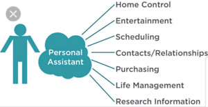 Barbara's Personal Assistant Services