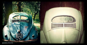 wanted any old beetle bodies or projects