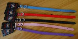 Faux Leather Dog Collar - Assorted Colours Available - Brand New Morphett Vale Morphett Vale Area Preview