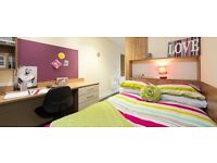 Single Room - 3 Bedroom Flat - Darley Bank, Derby - DISCOUNTED