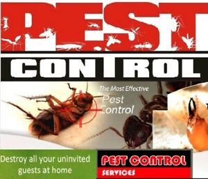 Pest control from $89🔴 all 🕸 suburbs🐜