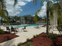 Luxurious Fully furnished condo for sale in Orlando FL