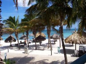 Aruba Divi Phoenix Beach Resort
