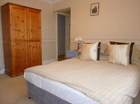 Double room for single professional person