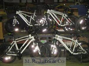 Police Bicycle Auction