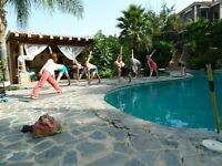 Yoga by the pool: Private lessons and group classes