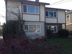 1/2 Duplex in Cook/Bay area