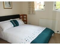 Short term room available weekly or monthly at Anniesland from mid September