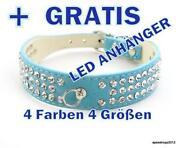 LED Halsband XS