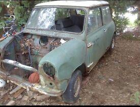Wanted, Original MK1 Classic Mini body.