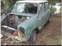 Wanted, Original MK1 Classic Mini body.